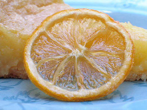 Candied Citrus Slices | Mouse in my Pocket