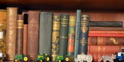 book shelf #1