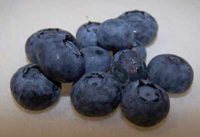blueberries3